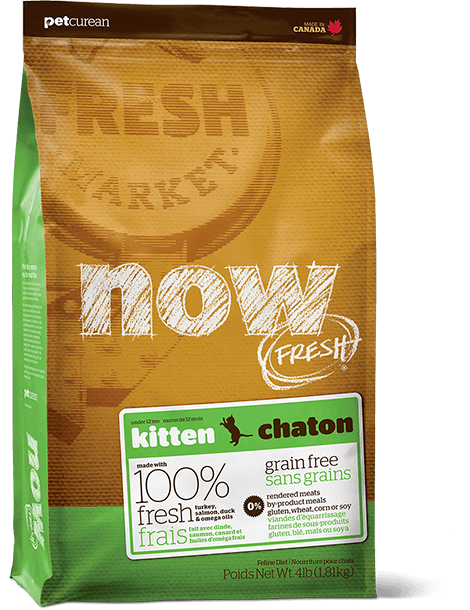 cat-now-grain-free-kitten
