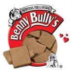 benny-bully